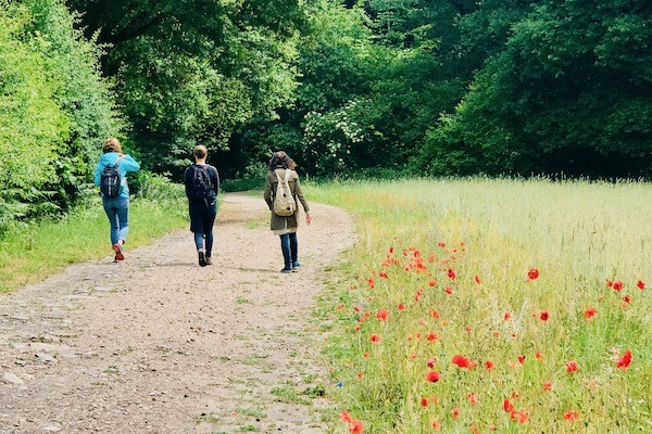Inspirerende-wandelingenalice-goes-wild-