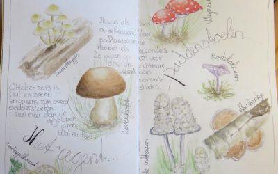 Met een 'nature journal' op ontdekkingstocht